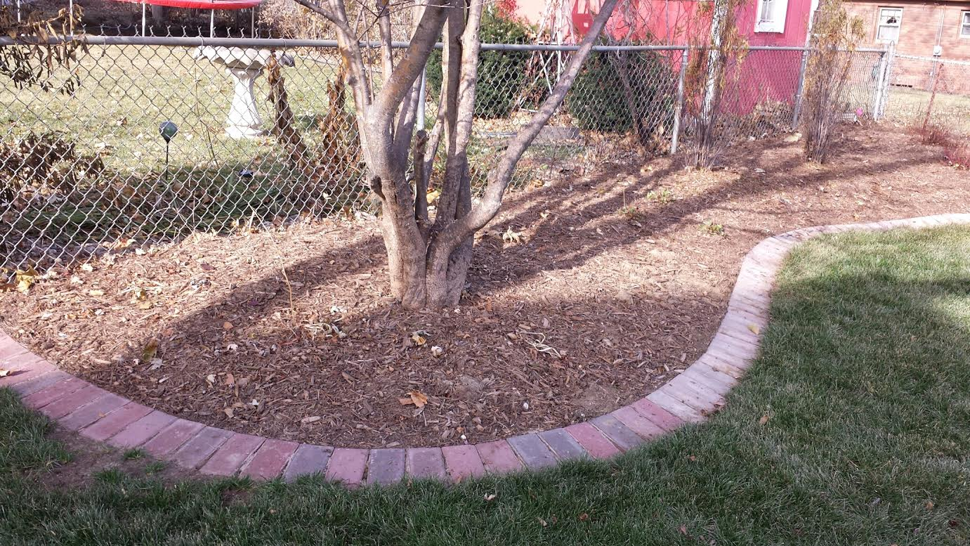 Brick Paver Edging Glamorous Best 25 Paver Edging Ideas On